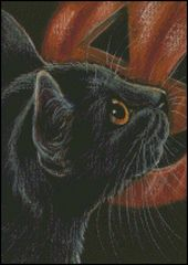 Halloween Black Cat & Pumpkin 2