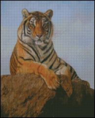 Bengal Tiger on a Rock