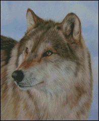 Grey Wolf - DS