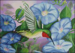 Hummingbird and Morning Glories