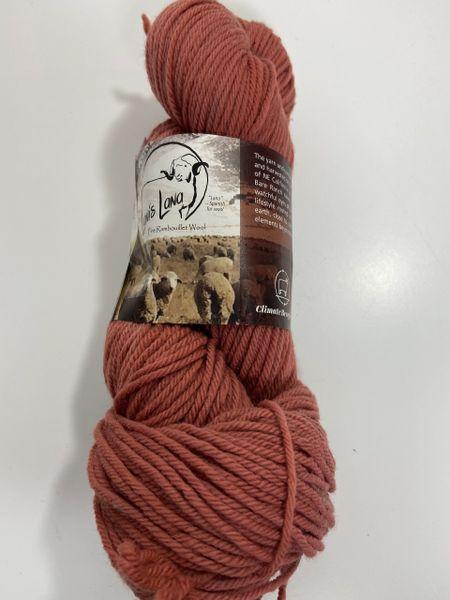 Surprise Valley Sand Hill Crane Worsted Weight Fine Rambouillet Wool Yarn