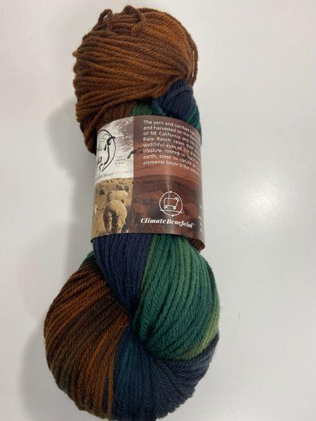 Surprise Valley Mallard Worsted Weight Fine Rambouillet Wool Yarn