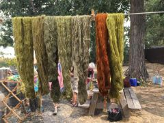 Woolgathering 2019 Great Basin Natural Dyes: Mini Skeins