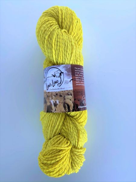Warner Bright Sport Weight Marled Yarn - Dyed with Weld