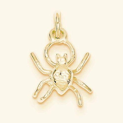 Spider Charm