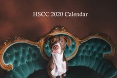 Reserve your 2020 HSCC Doggy Calendar