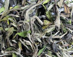 Fu Ding Bai Mu Dan King 50 gr (White Tea)