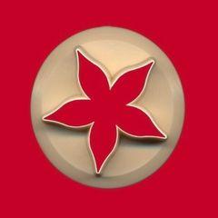 Rose Calyx Gumpaste Cutter 45mm