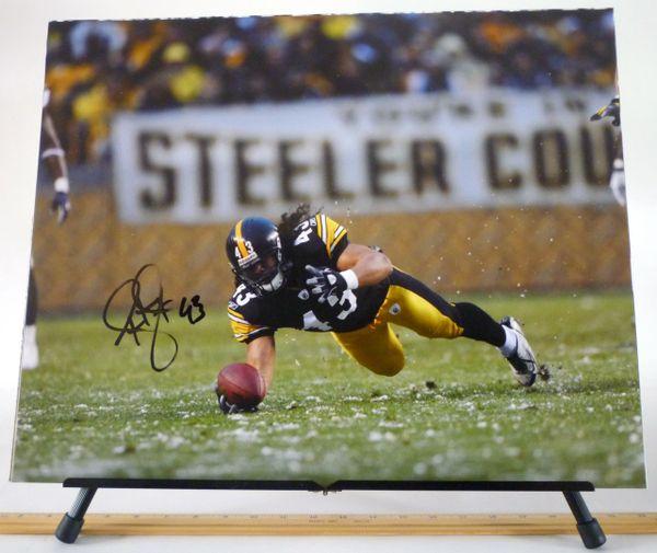 Troy Polamalu, Pittsburgh Steelers signed 16x20 photo