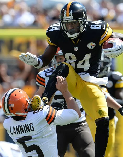3. Antonio Brown size 11x14 photo
