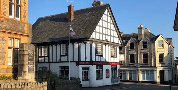 Freehold pub for sale devon