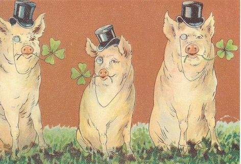 'The Good Luck Piggies' Offbeat Vintage Pig Greeting Card