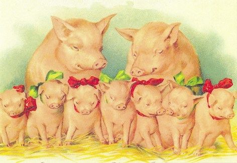 A Family Christmas Vintage Pig Illustration Christmas Card.