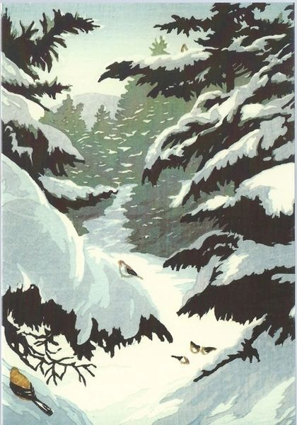 Pack of 5 Grosbeaks on Lambert Ridge. Contemporary Illustration Christmas Card