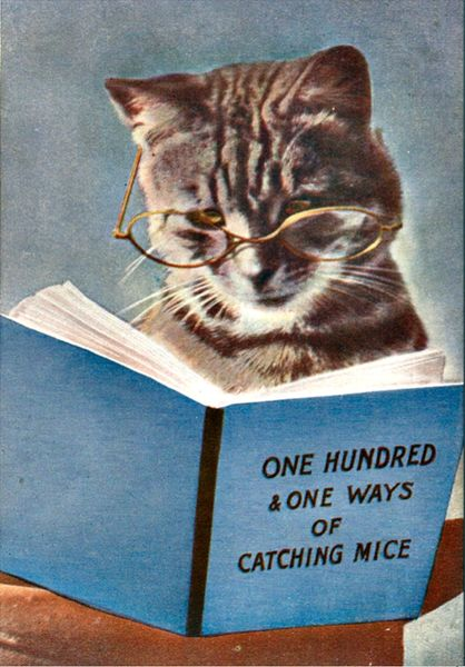 'Self-Help Manual' Very Funny Vintage Cat Illustration Greeting Card