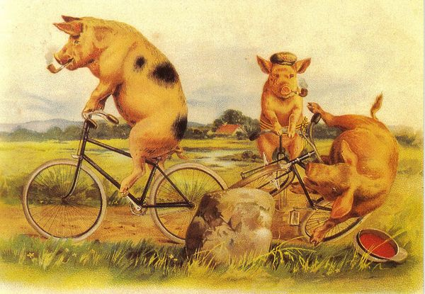 'The Cyclists' Unusual Vintage Pig Greeting Card Repro