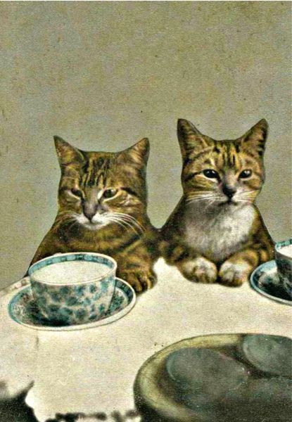 'Where's Our Tea?' Vintage image Greeting Card