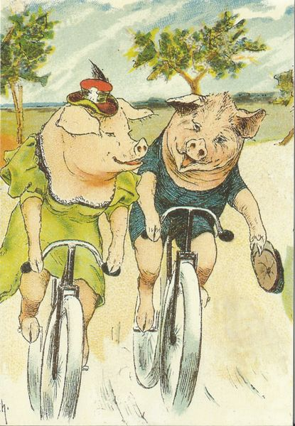 £1 Card!!! Victorian Piggies Cycling Unusual Vintage Greeting Card Repro
