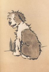 'Naughty Doggy' Vintage Dog Greeting Card with Illustration by Cecil Aldin.