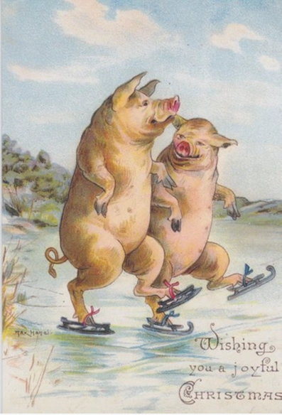 The Skating Pigs Vintage Christmas Illustration Greeting Card