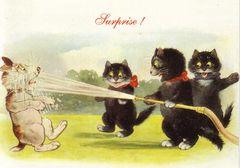 Surprise! Vintage Illustration Cat and Dog Greeting Card