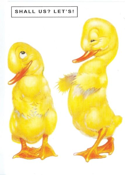 £1 Card!!! 'Shall Us? Lets!' Cute Vintage Duckling Illustration Greeting Card.