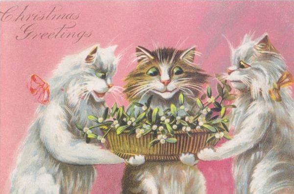 £1 Christmas Card!!! 'Mistletoe' Vintage Cat Christmas Card Repro.