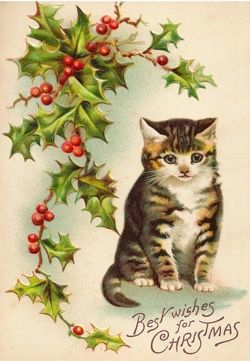 Best Wishes for Christmas. Vintage Cat Illustration Christmas Card.