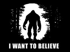 103. Bigfoot I Want To Believe T-Shirt