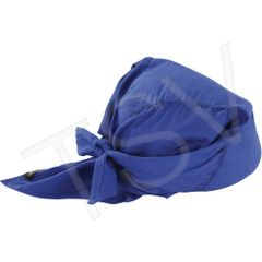 SEC686 Chill-Its® 6710CT Cooling Triangle Hat BLUE ERGODYNE #12587