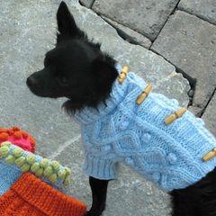 Sweater: Blue Toggle