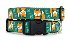 Collar: Foxes
