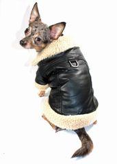 Jacket: Faux Leather Bomber Jacket