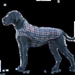 Coat: Reversible Fleece Plaid