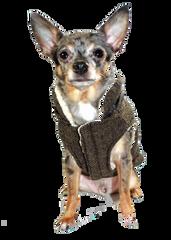 Coat: Fabulous Herringbone