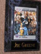 Joe Greene Sports Plaque