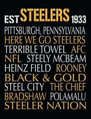 Pittsburgh Steelers Canvas Print