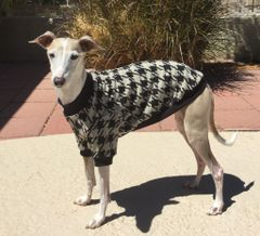 Houndstooth Dog Shirt