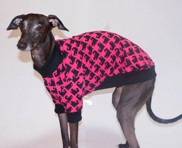 Digi Hearts Dog Shirt