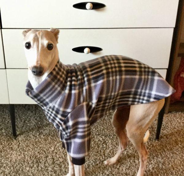 Grey Plaid Dog Sweater