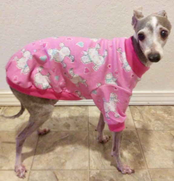 Pink Poodles Dog Shirt