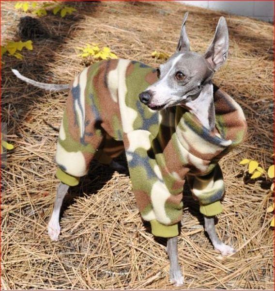 Camouflage Dog Jammies