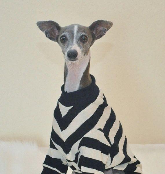 Black and White Dog Shirt