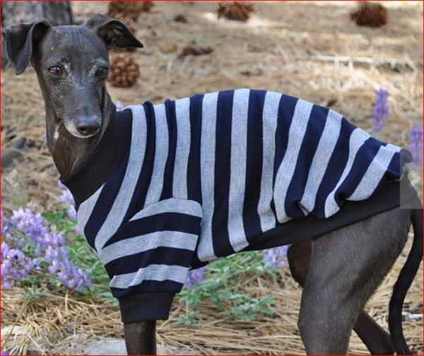 Grey Stripes Doig Shirt