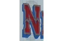 N - Photographic Letter Magnet