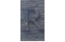 R - Photographic Letter Magnet