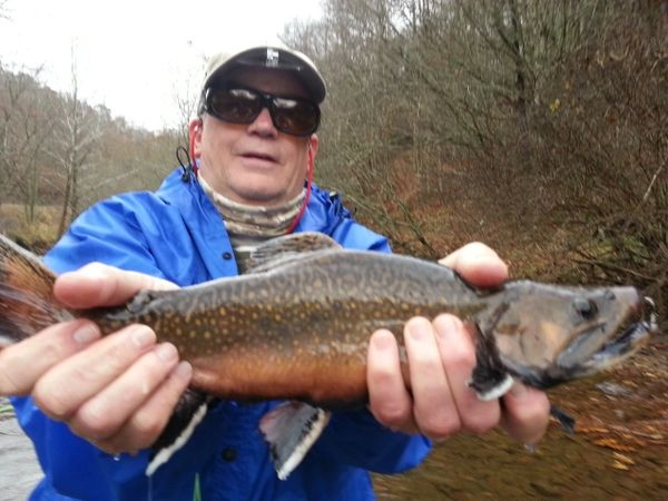 NORTHWESTERN NC Trout Bum FALL Trip Nov 11-12, 2020