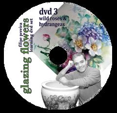 sku#7102 Wild Roses & Hydrangeas #3 - DVD - Flower