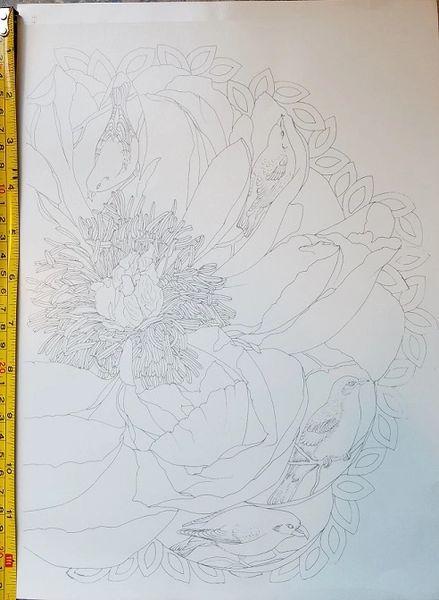 sku#4508 Decal -four Birds on Poppy Flower