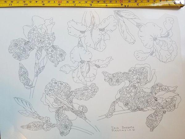 sku#4509 Decal - seven Iris by Fantasia